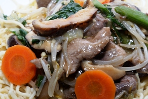 Cantonese Chow Mein with beef, pork and chicken